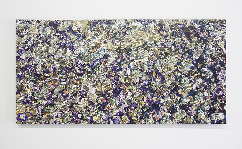 Connie Jenkins - Fossil Reef, 2009, Oil on Canvas, 35 x 70 in