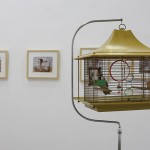 Mayde Herberg - Birdcage Series, 2013-2015, Birdcage with wooden bird