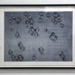 Ann Hamilton - Warp & Weft II, 2007, Lithograph on Paper, Acquisition Purchase