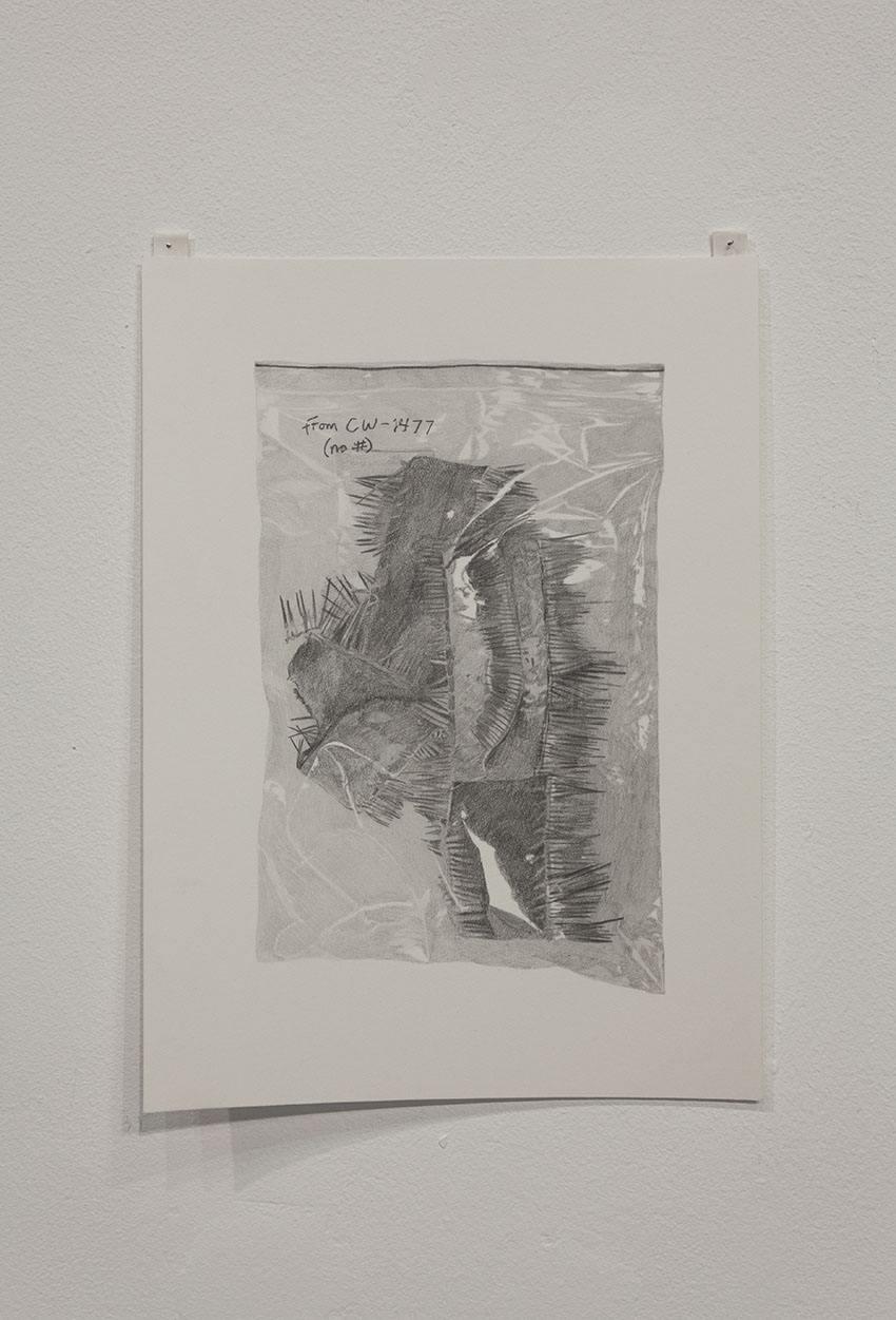 Gala Porras-Kim - One snakeskin strip bag, 2016, Graphite on paper